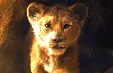 The Lion King 2019 – Teaser Trailer