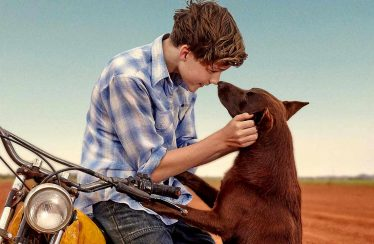 Red Dog The Early Years Film Review